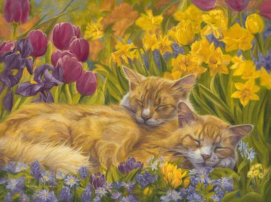 Картина по номерам 40x50 Спящие коты
