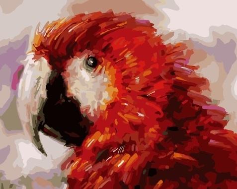 Картина по номерам 40x50 Красный попугай Карудо